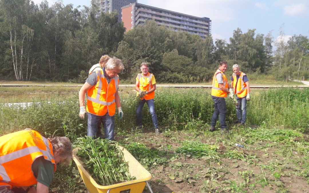 Spoorpark doet oproep groenvrijwilligers!