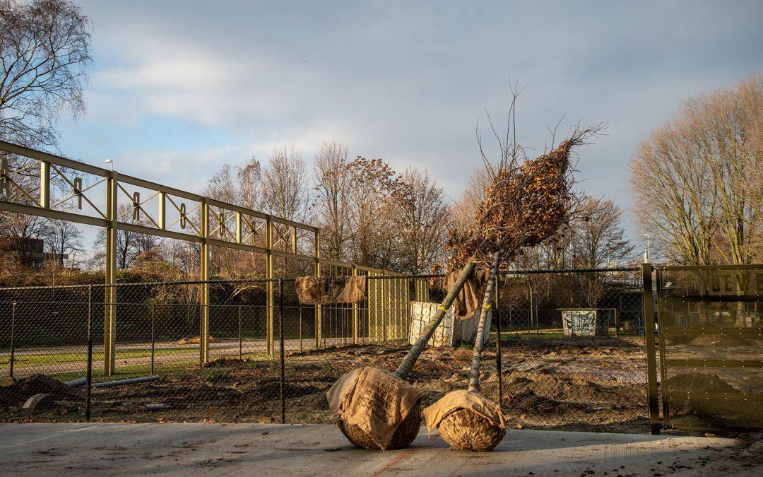 Volop bomen geplant in Spoorpark