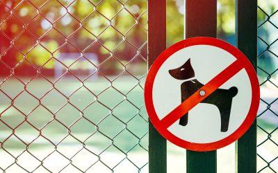 College Tilburg stelt hondenverbod Spoorpark vast