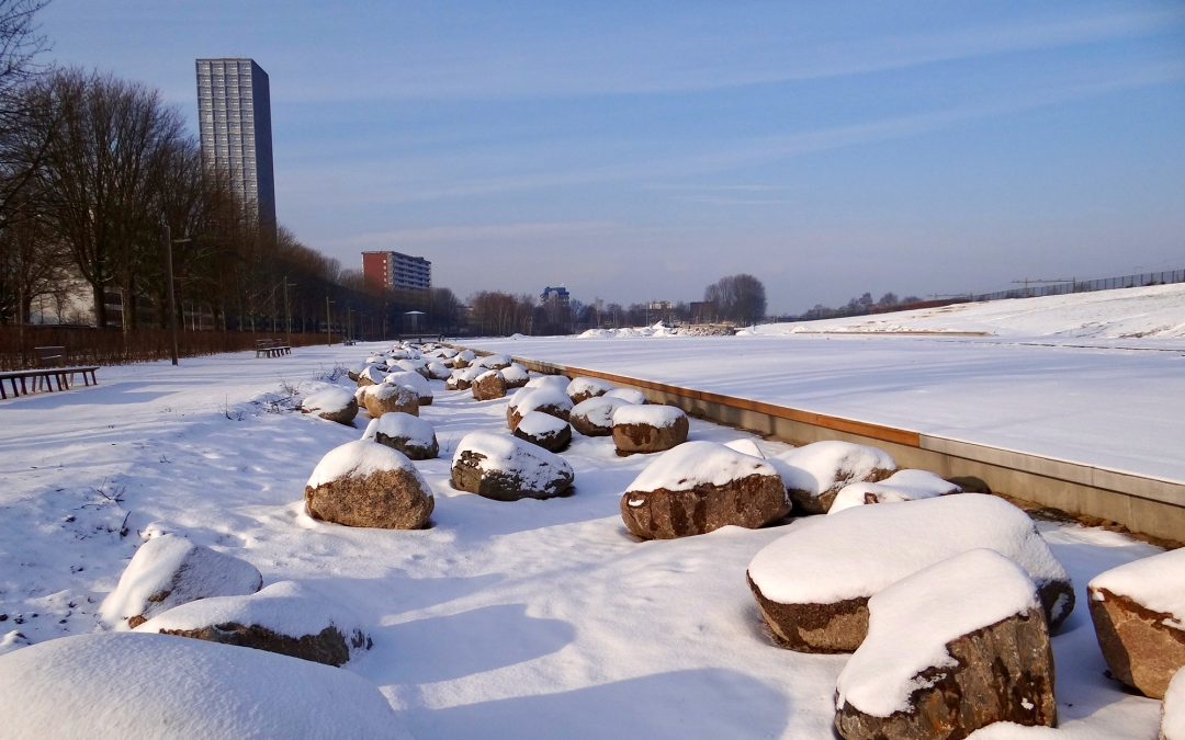 Winter in het Spoorpark
