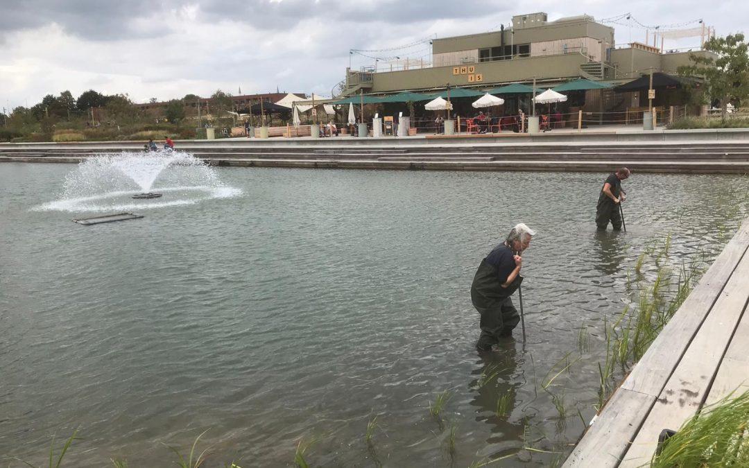 Vrijwilligers gezocht voor Team Levend Water Spoorpark